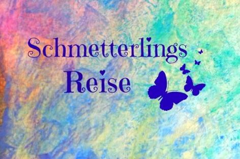 Schmetterlingsreise2